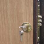 Рейтинг и виды замков для металлических дверей